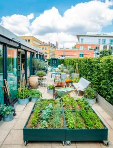 urban-rooftop-garden-for-small-space