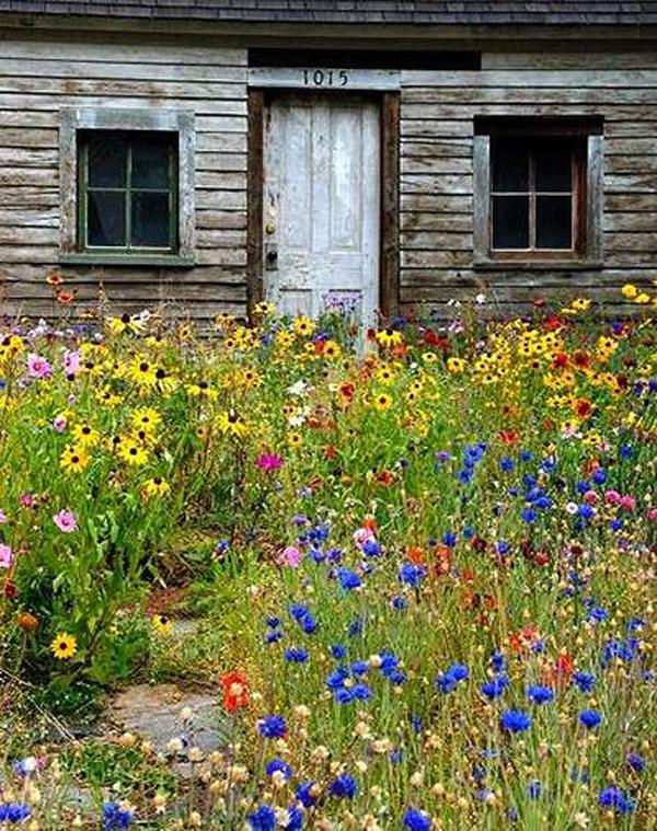 windflower-cottage-garden-decor