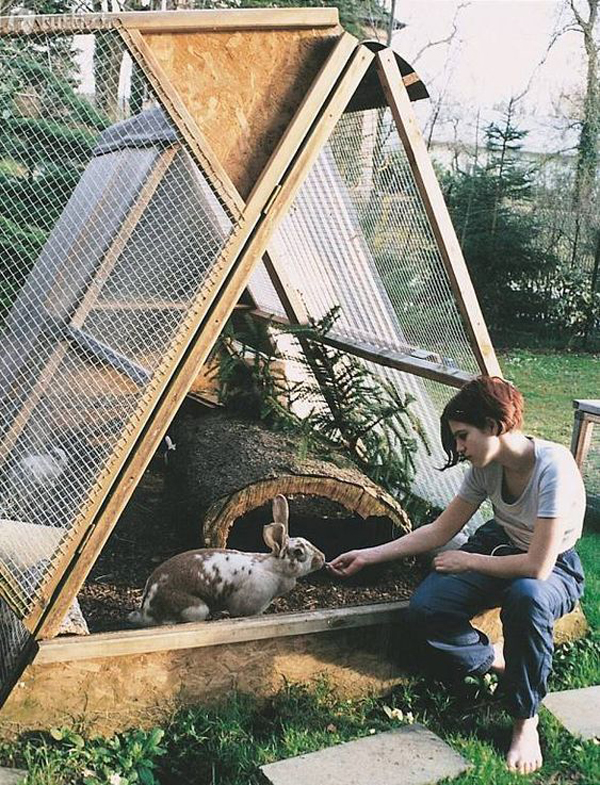 a-frame-outdoor-bunny-houses
