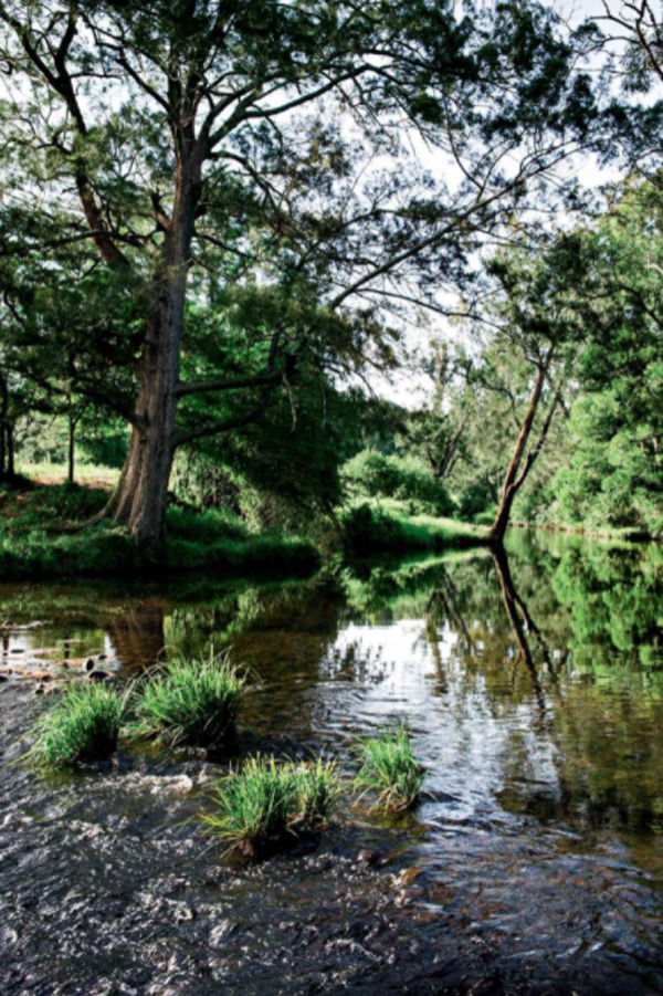 beautiful-bundewallah-ceek-landscapes