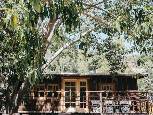 charming-cabin-landscapes