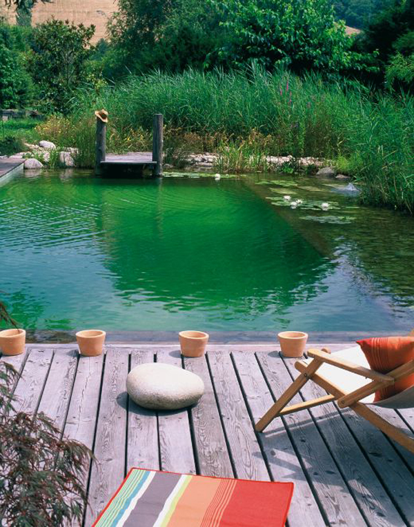 cozy-river-swimming-pool-with-nature-accents