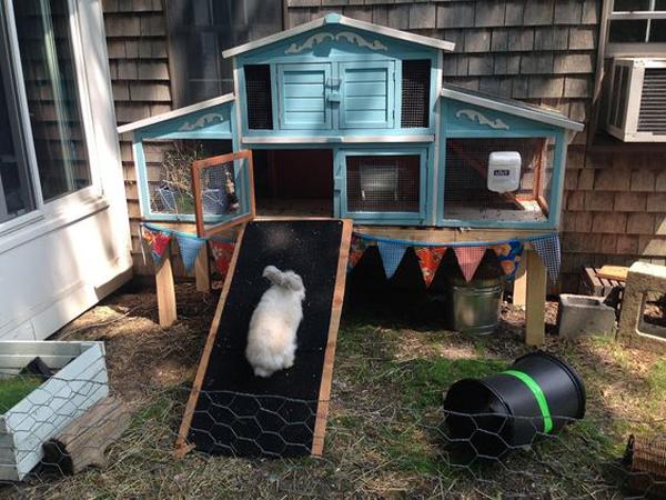 easy-diy-rabbit-house-in-the-backyard