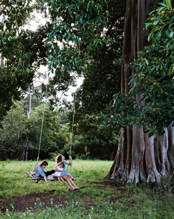 fun-outdoor-swing-under-giant-fig-tree