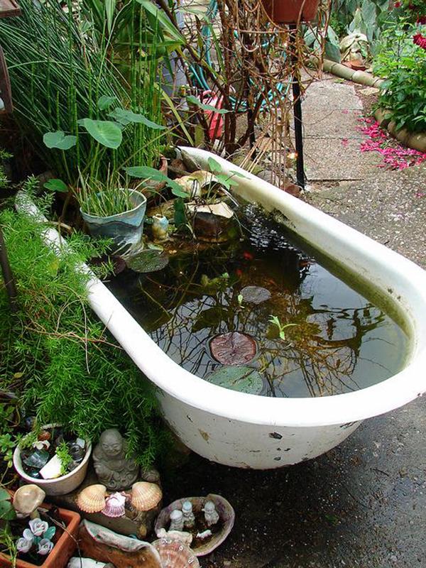natural-bathtub-garden-pond-with-water-plants