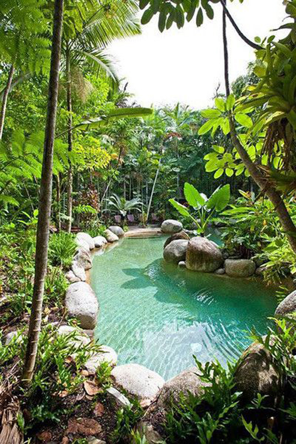 natural-swimming-pool-landscape-like-a-river