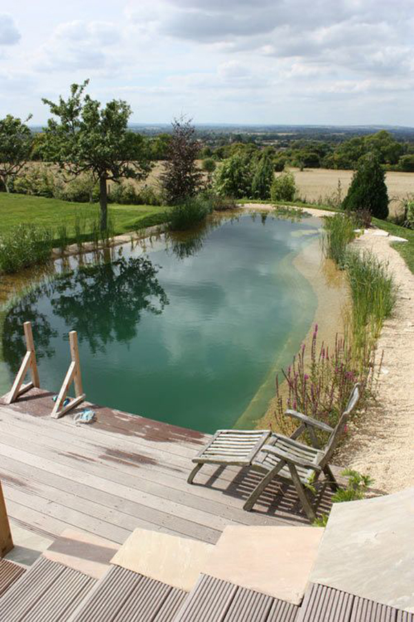 nature-swimming-pool-with-landscaping-ideas