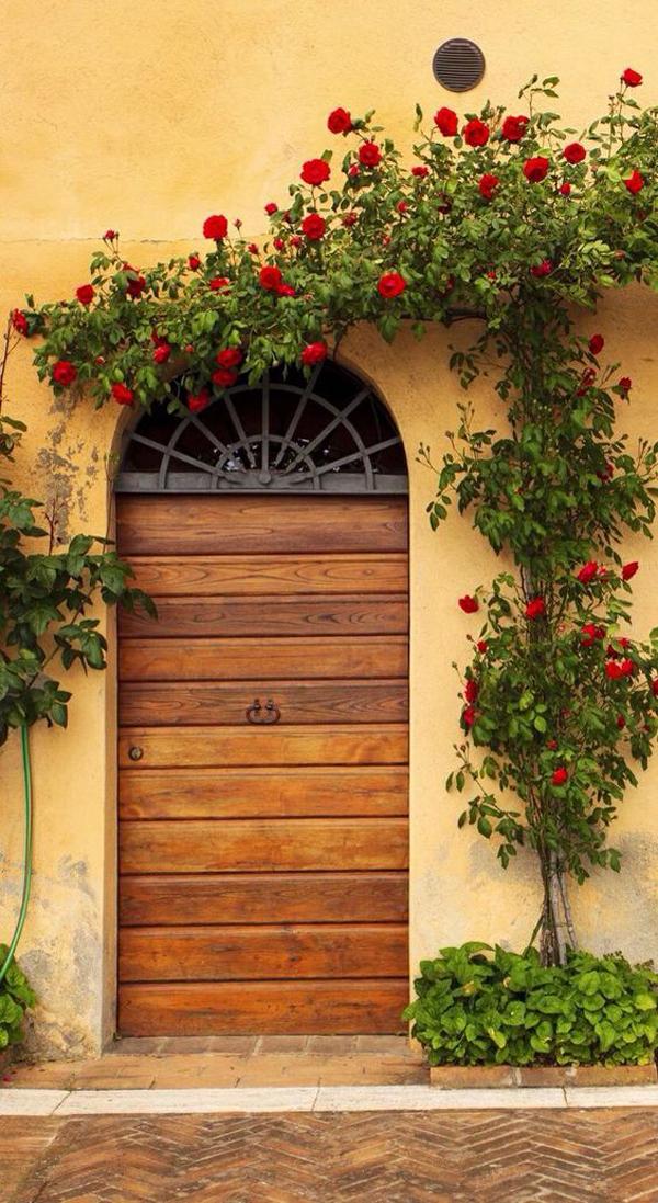 nature-wood-front-door-designs