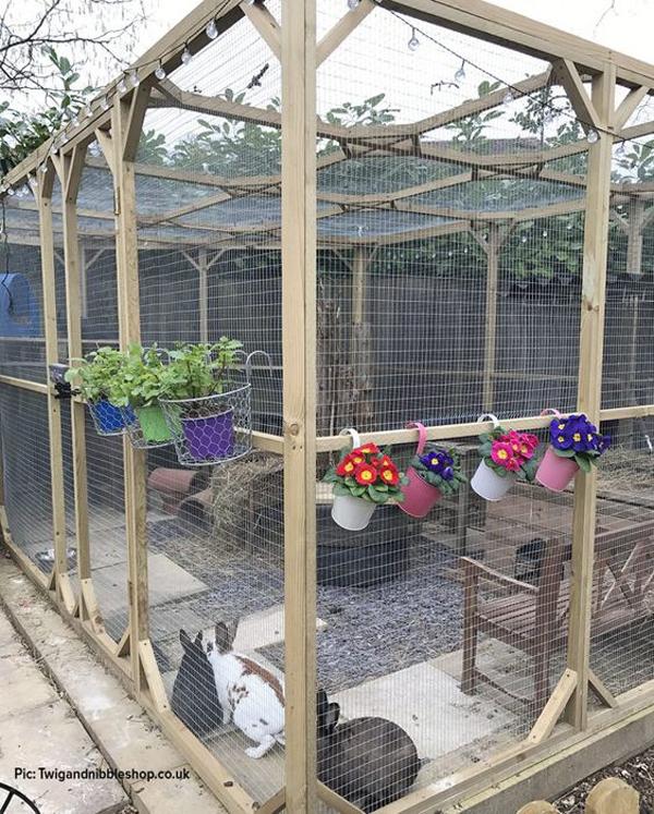 outdoor-rabbit-hutches