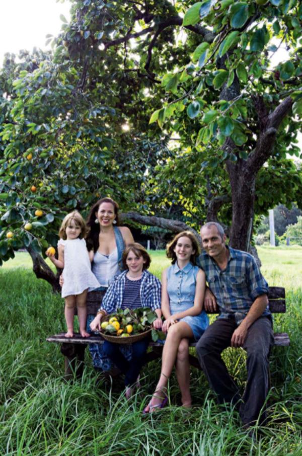 persimmon-trees-garden-design