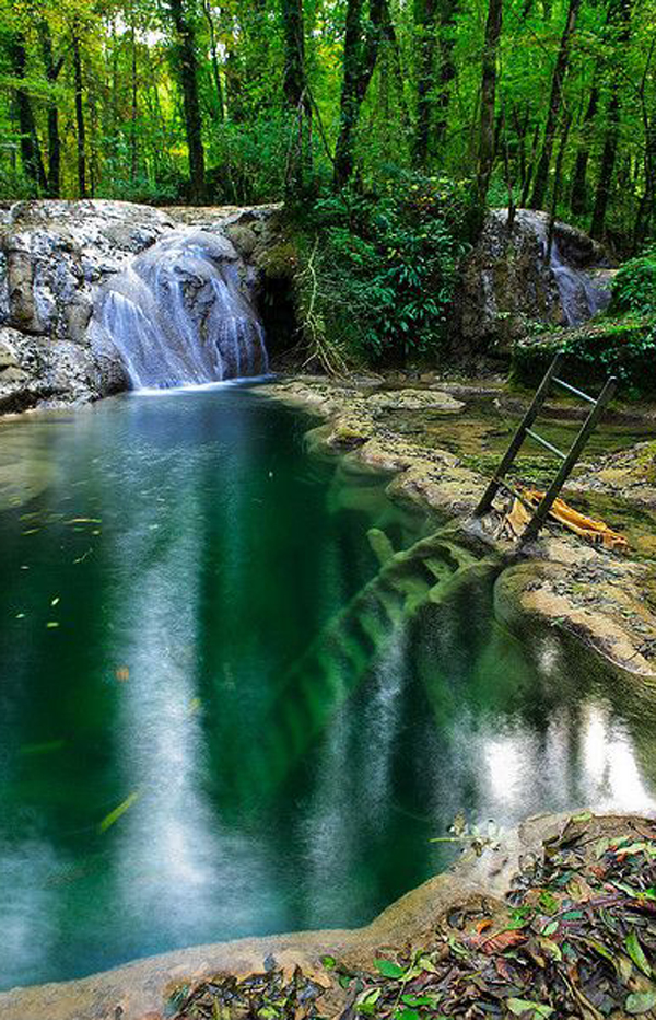 river-forest-swimming-pools