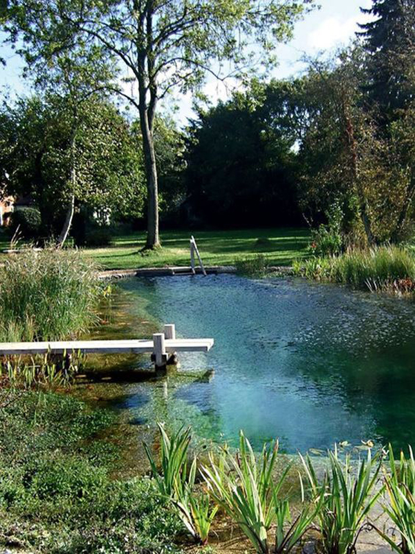 river-swimming-pool-for-small-area