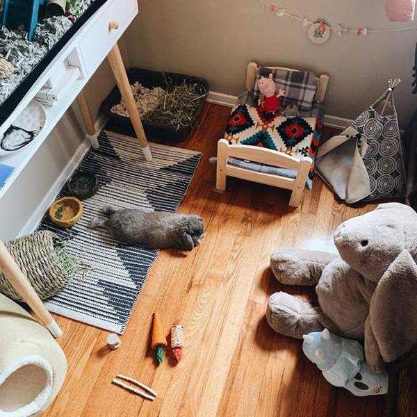 small-indoor-bunny-cage-design