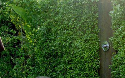 best-outdoor-shower-with-garden-fence