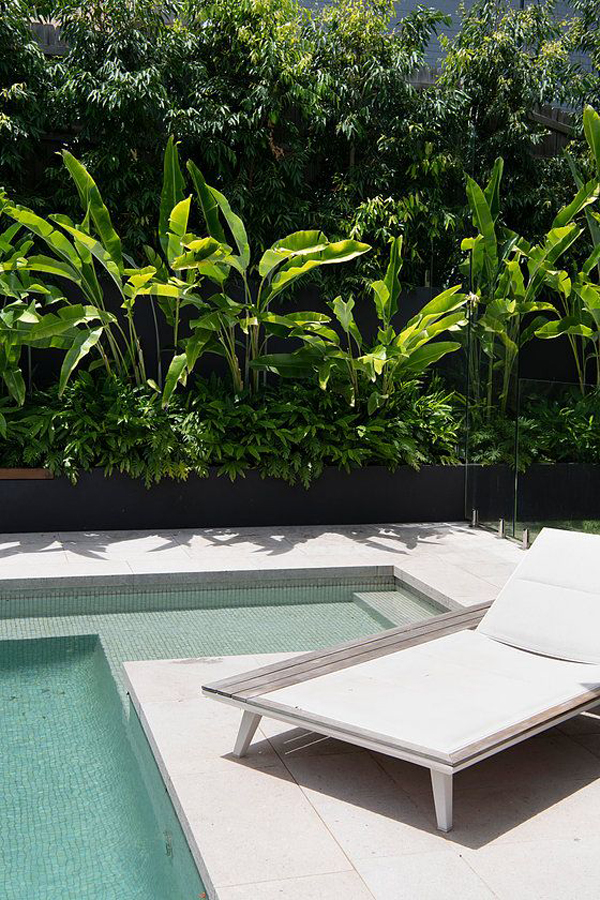 contemporary-pool-design-with-tropical-landscapes