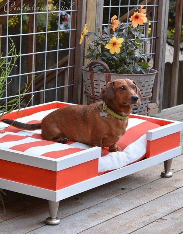 diy-dog-bed-in-balcony