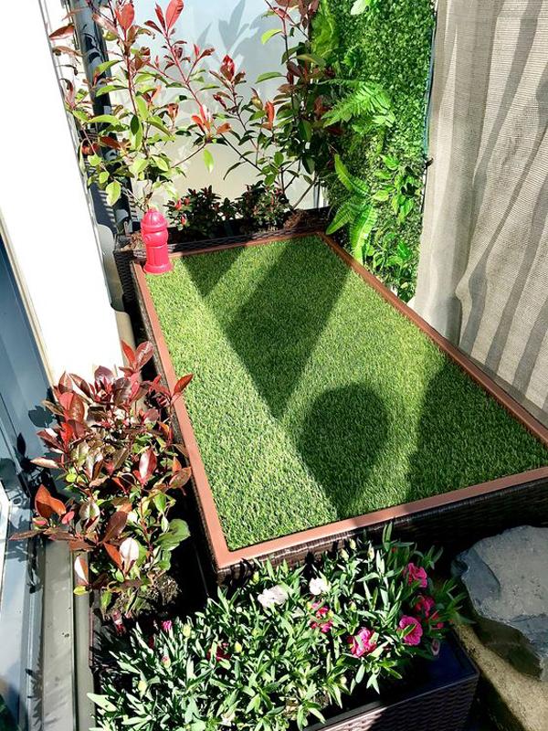 dog-balcony-garden-ideas