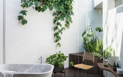 mid-century-indoor-bathroom-with-outdoor-gardens