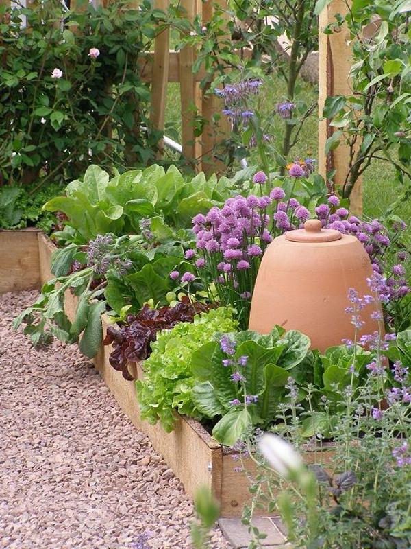 salad-raised-bed-gardens