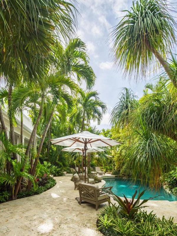 tropical-backyard-swimming-pool-landscapes