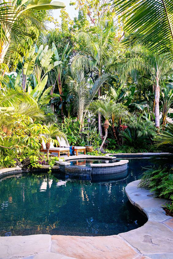 tropical-plant-retreats-in-the-pool