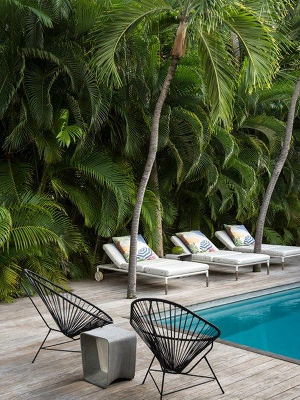 tropical-swimming-pool-landscaping-ideas