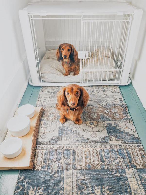 boho-chic-dog-crate-ideas
