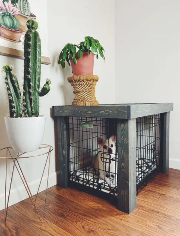 cool-dog-crates-with-indoor-plants