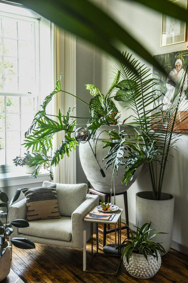cozy-reading-nook-with-greenery-decor