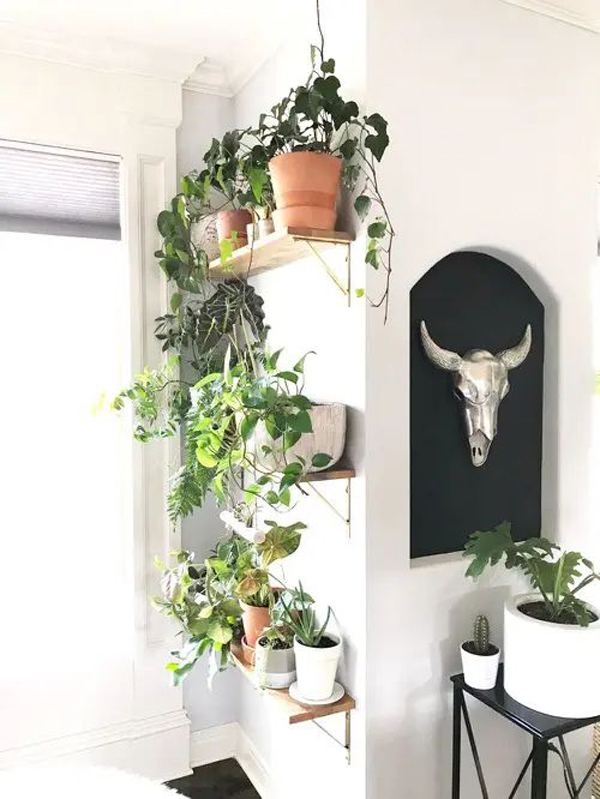 diy-indoor-plant-shelves-for-corner-wall