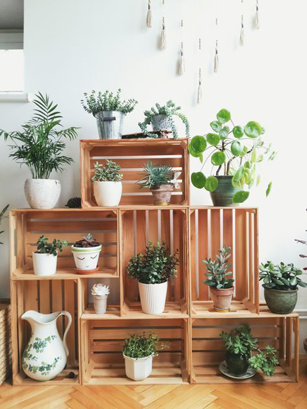 diy-kitchen-plant-ideas-with-crates