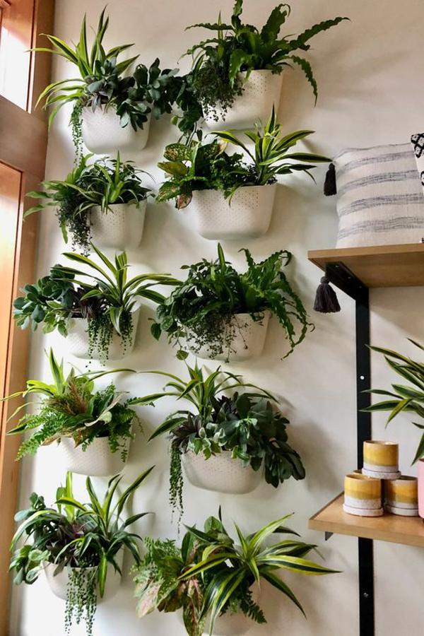 eco-vertical-garden-ideas