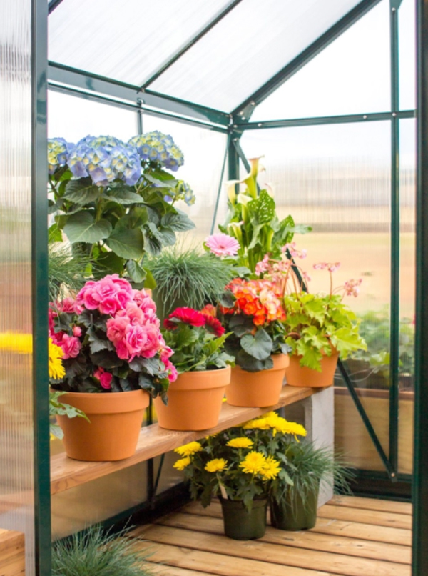 greenhouse-flower-garden-ideas