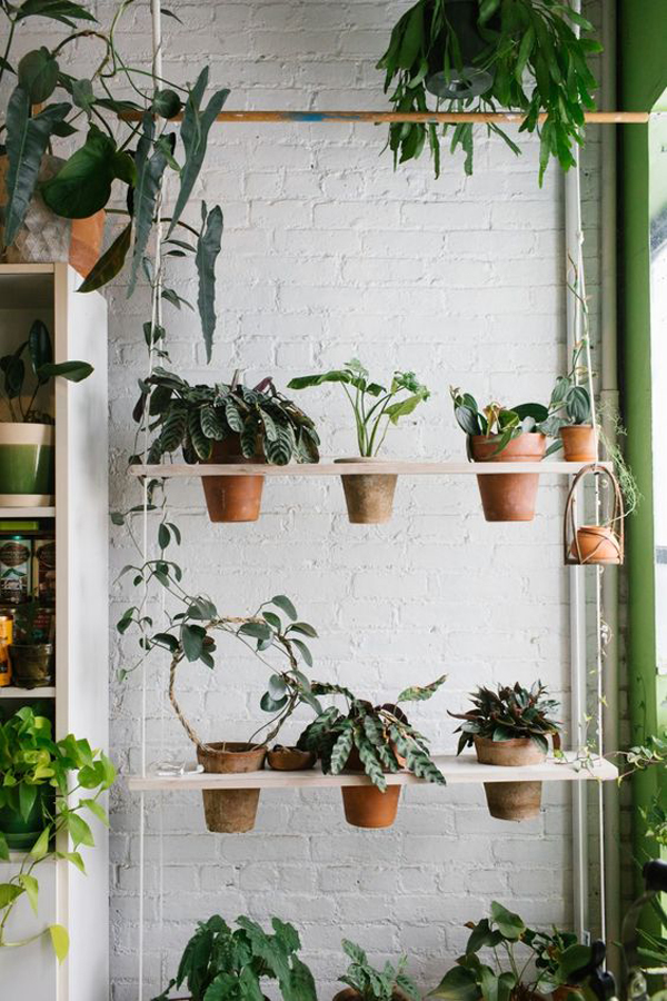 hanging-indoor-plant-rack-design