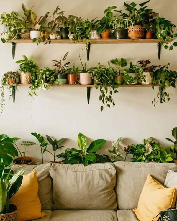 indoor-garden-rack-wall-ideas