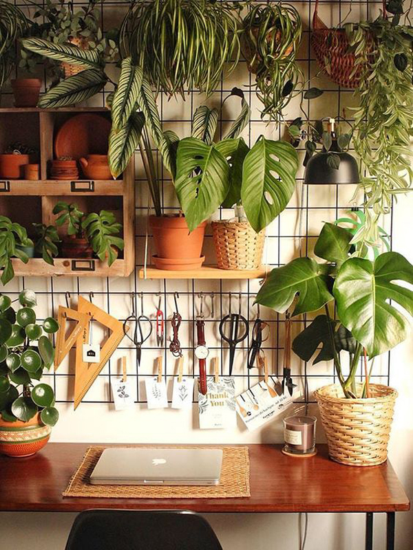 instagramable-indoor-plant-wall
