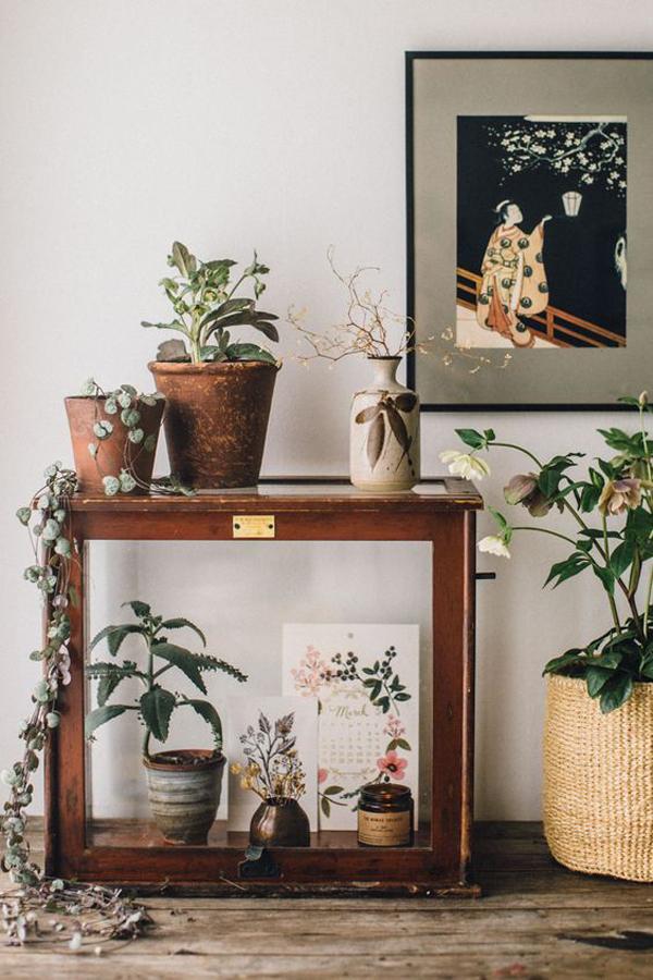 japanese-indoor-plant-ideas