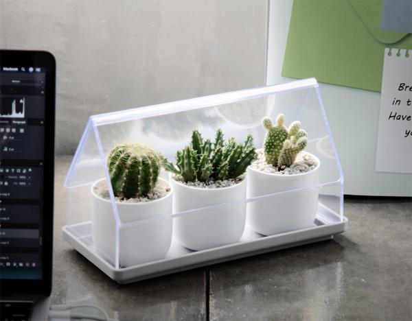micro-green-house-plant-tray-design