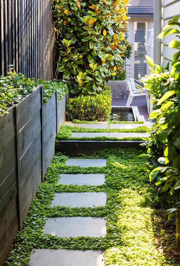 modern-side-garden-with-pond