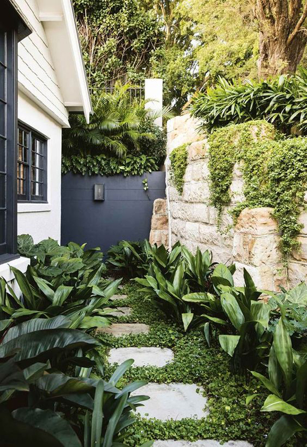 side-garden-ideas-with-bold-wall-color