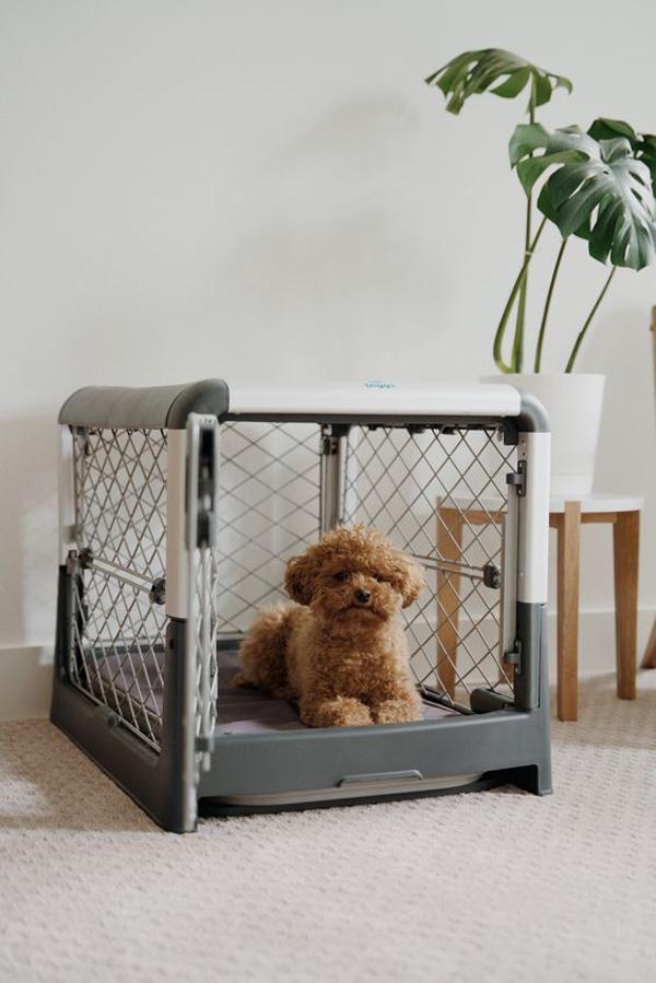simple-dog-crates-ideas