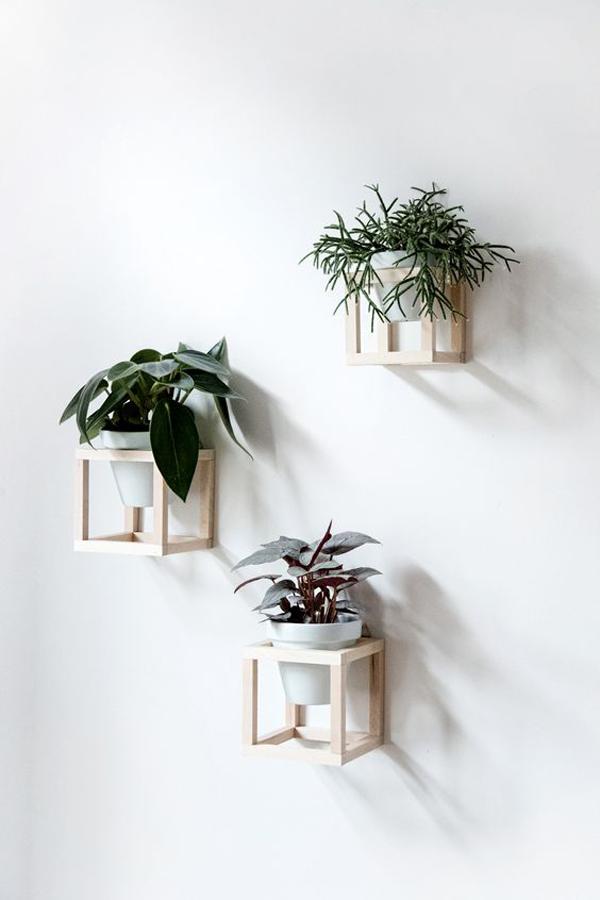 unique-diy-hanging-planter-wall