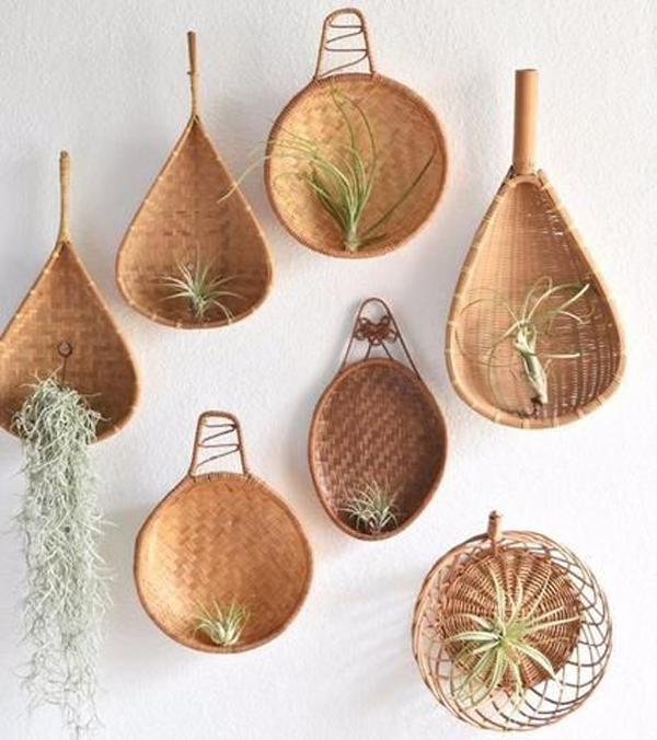 unique-diy-plant-wall-ideas