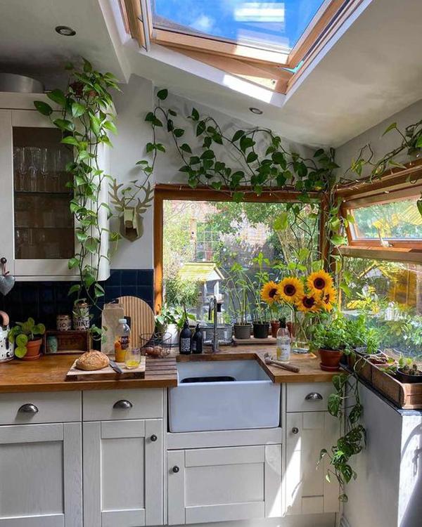 beautiful-kitchen-plants-with-skylight