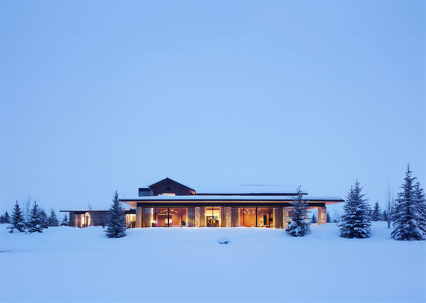 four-pines-with-snow-landscaping