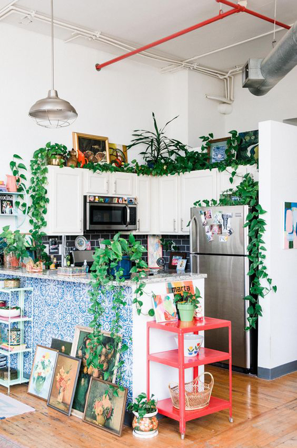 fresh-kithen-plant-ideas-for-small-space