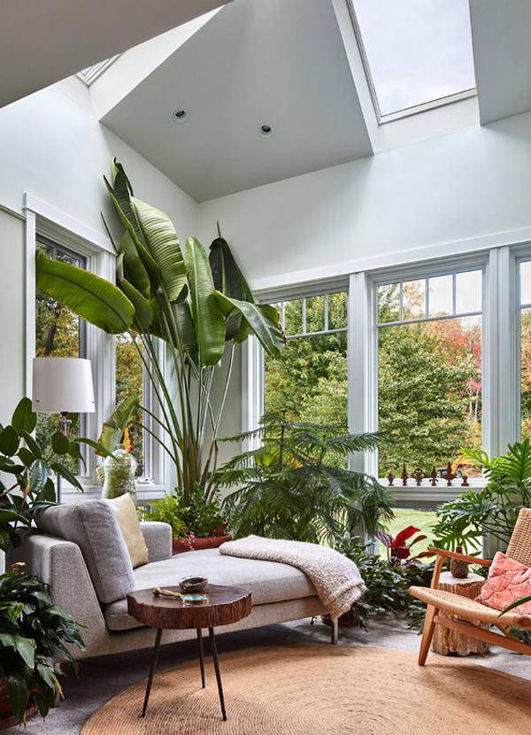 modern-tropical-sunroom-design-with-indoor-plants