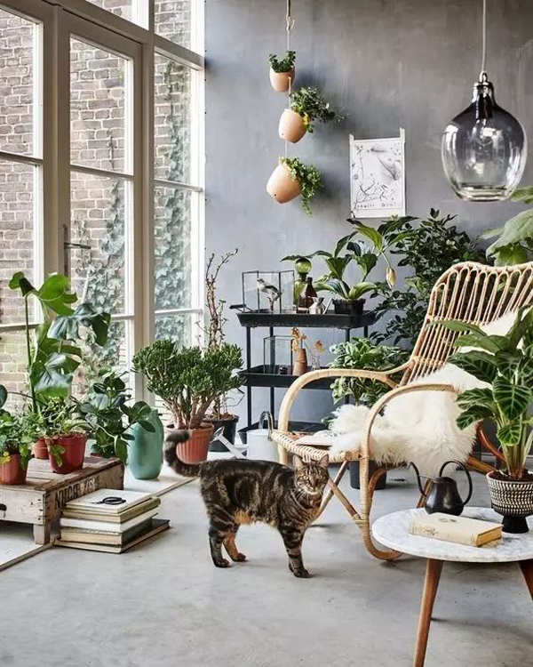 nature-tropical-sunroom-design-ideas