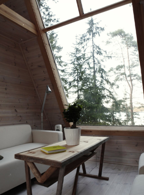 tiny-cabin-interior-with-living-space