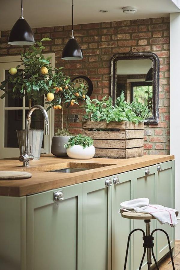 vintage-kitchen-plant-decor